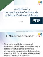 Presentacic3b3n Estructura General Currc3adculo1