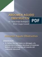 manejodelabdomenagudoobstructivo-090423165305-phpapp01.pptx
