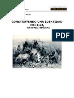 1 Construyendo una Identidad Mestiza Historia Indi¦ügen Ejercicios