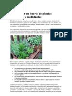 Como hacer un huerto de plantas aromáticas y medicinales