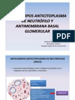 Charla 4. Anticuerpos Anticitoplasma de Neutrofilo y AntiMembrana Basal Glomerular