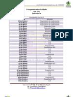 cronograma enfermería