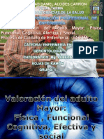 Ppt Gero_expo
