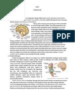 Otak dan Saraf Kranial