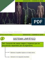 sistemalinftico-091105044905-phpapp01