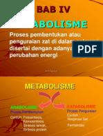 4-babiv-metabolisme