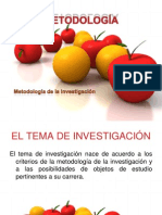 El Tema de Investigacion- Santo Tomas