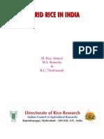 Hybrid Rice in India