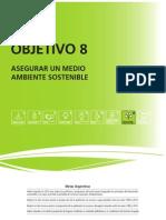 8 Medio Ambiente Argentina