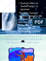 Tsunami and Safety Rules.pptx