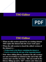 TSO-Editor1.ppt