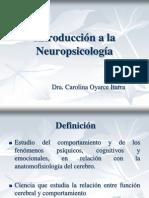 Clase No 1 Introduccion a La Neuropsicologia