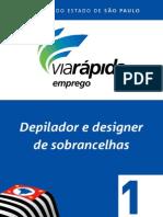 Depilador e Designer Sobrancelhas