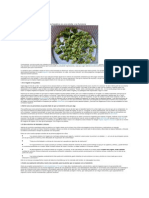 La Limpieza Hepatica Con Sales de Epsom y Aceite de Oliva