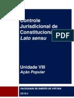 DIR-PROC-CONSTIT-2010-Unid-VIII-Ação+Pop