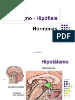 PP Hipotalamo hipofisis hormonas