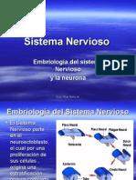 Sistema Nervioso Embriologia y Neurona 17