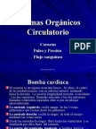 Sistemas Organicos Circulatorio 6