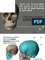 SKULL Mini eBook