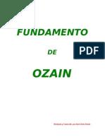 73866364-ozain