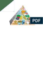 Piramide de Los Alimentos Ingles