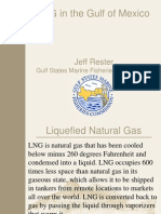 Lng in the Gulf of Mexico