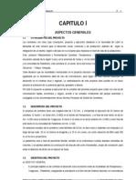 CAP I ASPECTOS GENERALES.doc