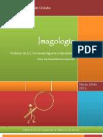 imagologia-estudio-analisis-imagen-publica.pdf