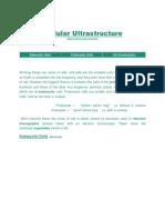 Cellular Ultrastructure.pdf