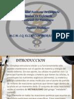 4.4 Procesos Anabolicos-t.m.