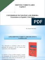 Caputulo i Lineamientos (1)