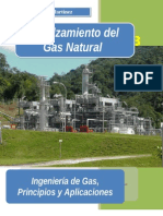 Endulzamiento Del Gas-natural