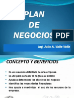 Implementacion Plan de Negocios 2013