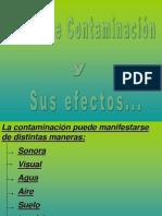 La Contaminacion y Los Efectos