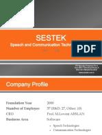 Sestek Company 2013