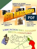 Exp. Mercado i (2)