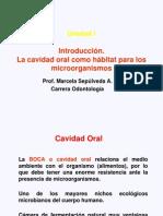 Clase 1 Odont 2008 Cavidad Oral