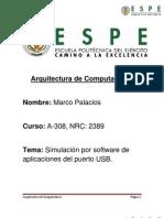 Marco Palacios, Simulación USB