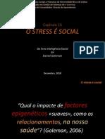 O STRESS É SOCIAL
