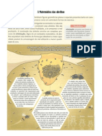 A Matemática das abelhas