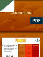 Ciclo Menstrual ENFERMERIA