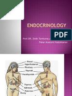Endocrinology97-2003