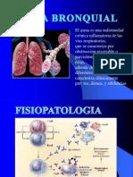 Asma Bronquial 1
