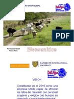MODELO GERENCIAL COMERCIALIZADORA DELAIGRO.pdf