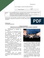 Prueba La Noticia Lenguaje_5basico