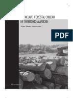 El enclave forestal en territorio mapuche, sur de Chile