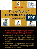 14-Exercise BP