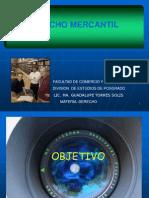 Derecho Mercantil Guadalupe Torres