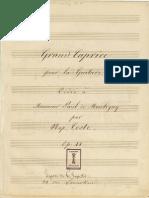 Napoleón Coste op 11, Grand Caprice