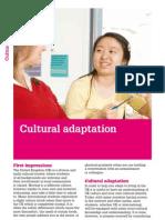 Cultural Adaption
